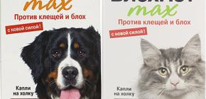 Mijloace Blohnet pentru pisici și câini: recenzii și instrucțiuni de utilizare
