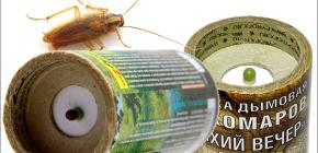 Bombe de bomba insecticide pentru a ucide gandacii in apartament