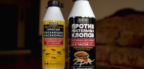 Hector insecticidal de la bug-uri pat și alte insecte