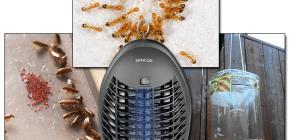 Revizuirea capcanelor eficiente pentru insectele care zboară și se târăsc