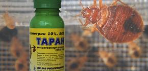 Remediu pentru bug-uri de pat Ram